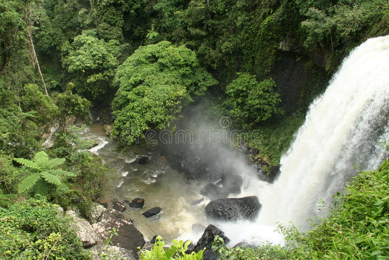 Тропический водопад - Tablelands Atherton стоковая фотография rf