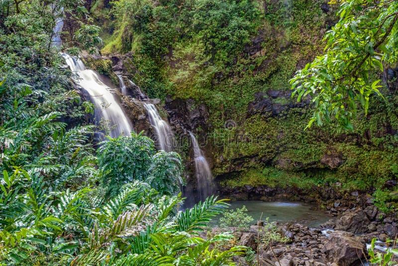 Тропический водопад Мауи стоковая фотография rf