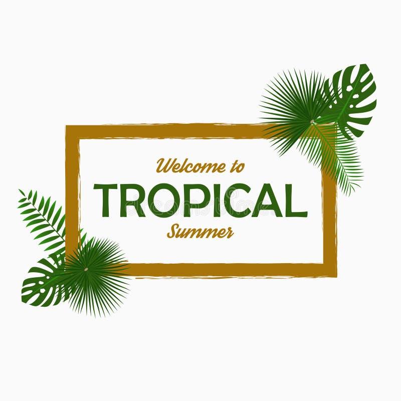 Тропический дизайн карточки с - листьями ладони, лист джунглей, экзотическими заводами и рамкой границы График для плаката, знаме бесплатная иллюстрация