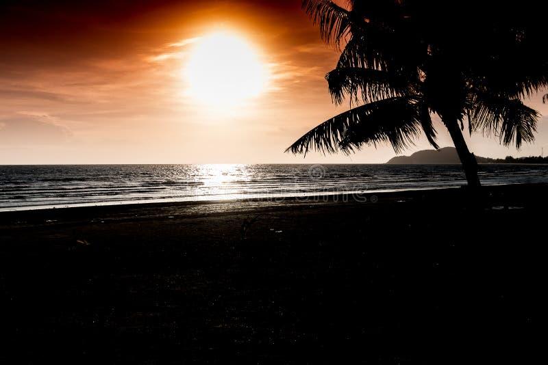 Тропический заход солнца с силуэтом пальм стоковая фотография rf