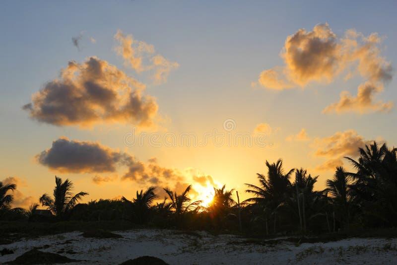 Тропический заход солнца стоковое фото