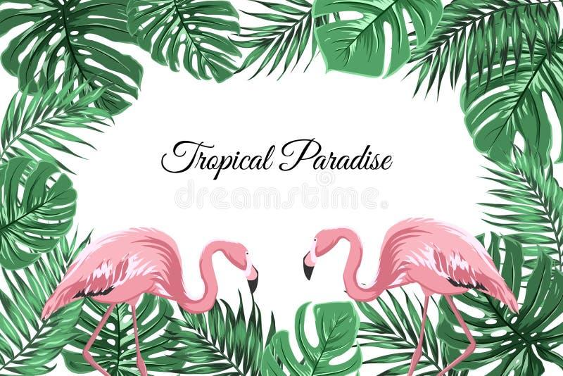 Тропический зеленый цвет рамки границы выходит розовые фламинго бесплатная иллюстрация