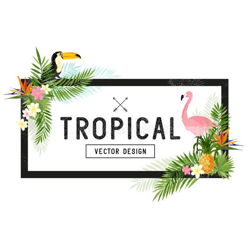 Тропический дизайн границы иллюстрация вектора