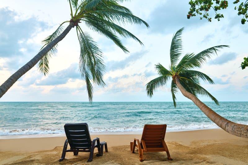 Тропический ландшафт с 2 шезлонгами под листьями и видом на море пальмы стоковые фото
