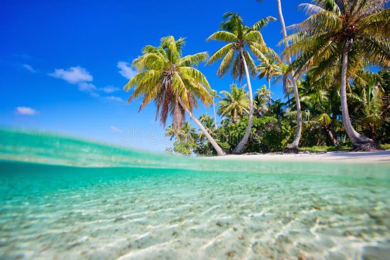 Тропический остров стоковые фотографии rf