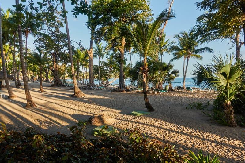 Тропический песчаный пляж на восходе солнца Инфраструктура пляжа стоковое изображение