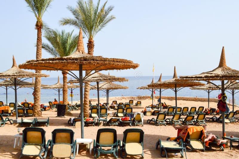 тропический пляж на каникулах, тропический курорт с кроватями солнца, loungers солнца и зонтики солнца в форме соломенных шляп пр стоковая фотография rf
