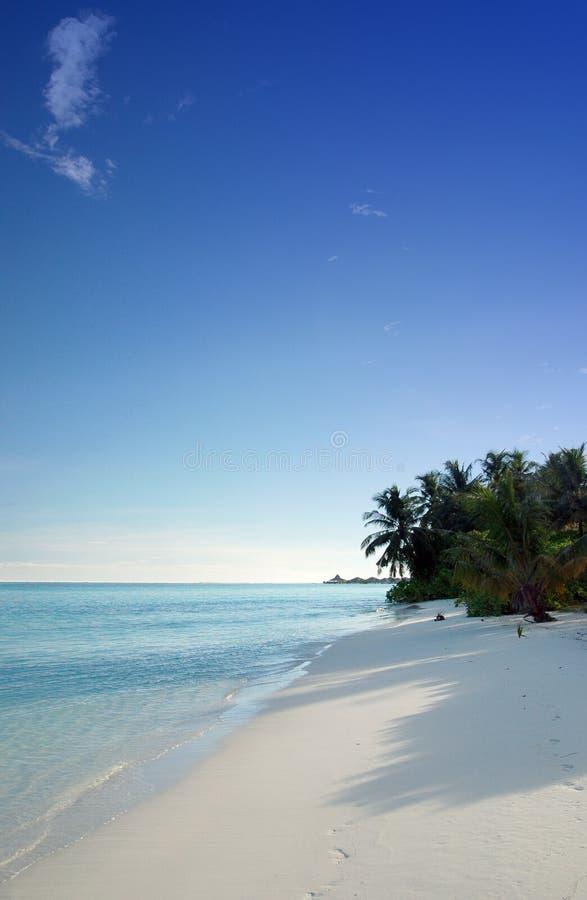 Тропический пляж Бесплатное Стоковое Изображение