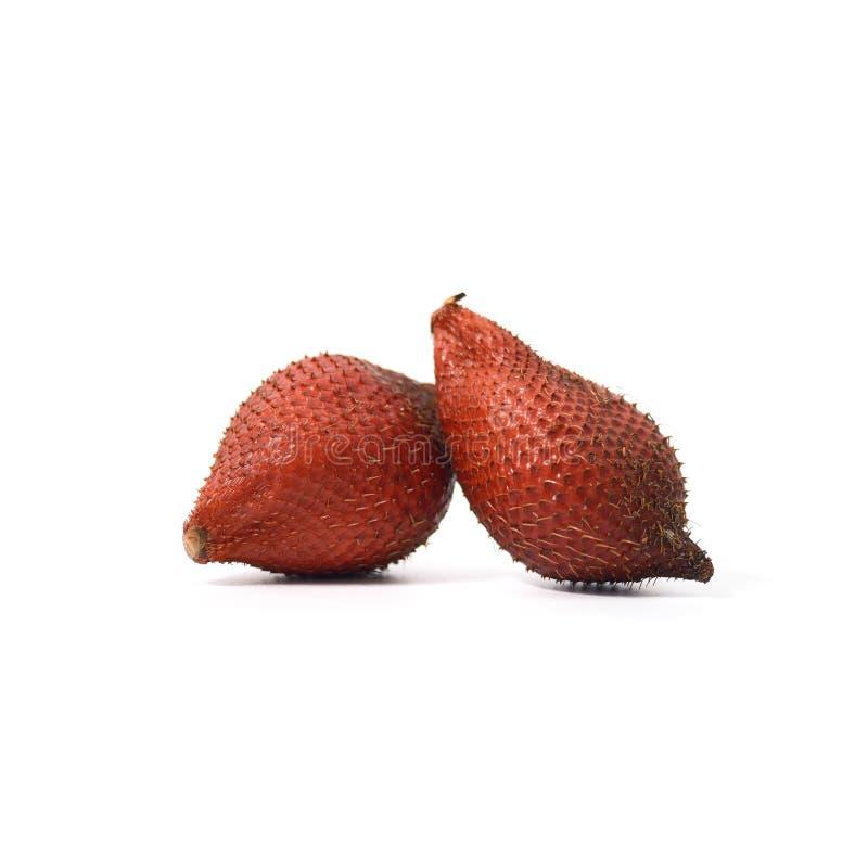 Тропический плодоовощ: Плодоовощ змейки, изолят Salak, Salacca или Sala дальше стоковое изображение