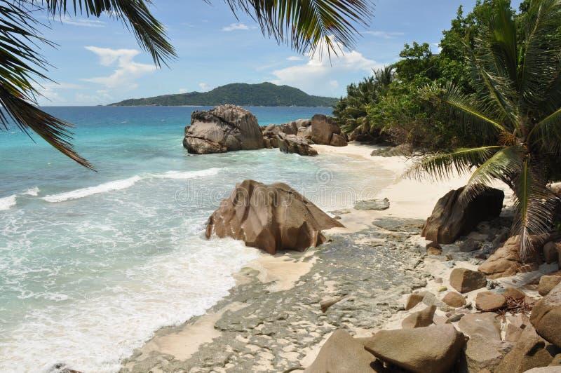 Тропический пляж на Ла Dique, островах Сейшельских островов стоковые изображения