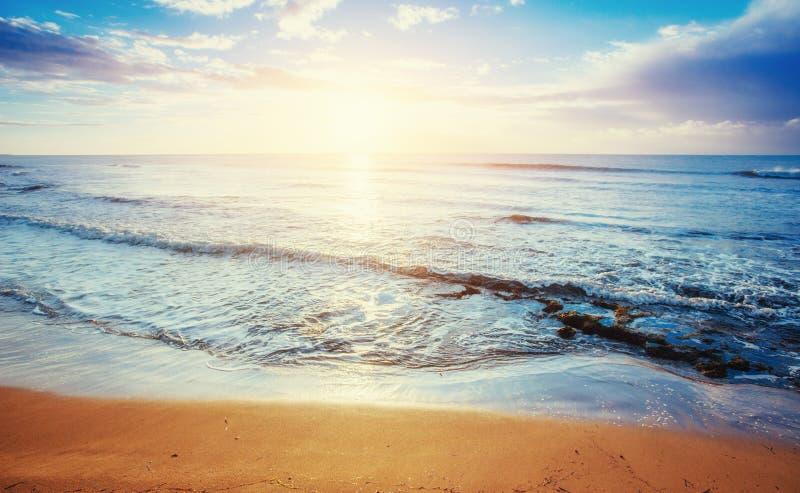 Тропический пляж на песочном стоковые фото