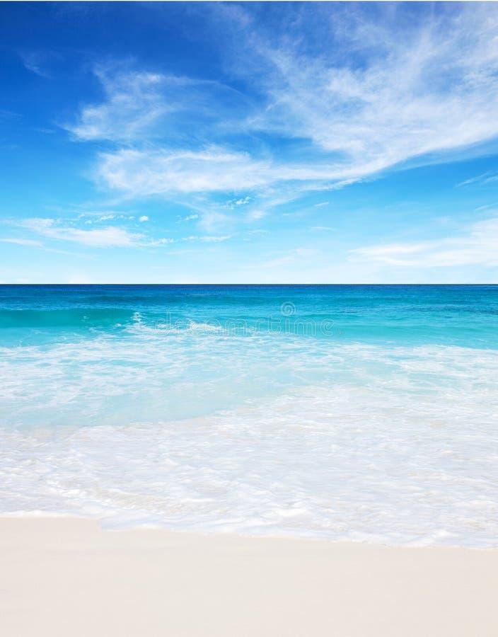Тропический пляж с белым песком и голубое небо на дне лета солнечном Сейшельские острова стоковые фото