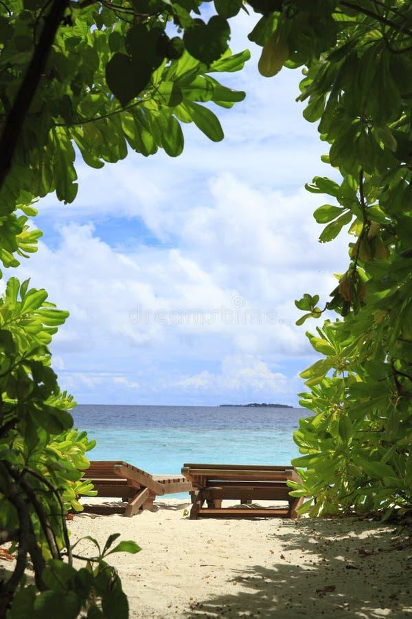 Тропический пляж Стоковые Фото