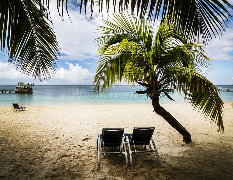 Тропический рай стоковые фотографии rf