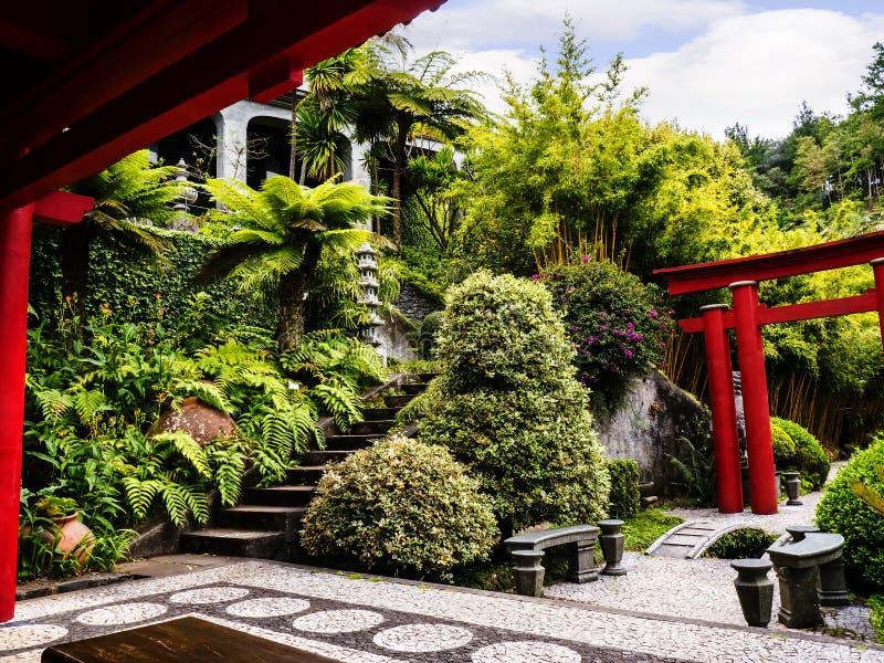 Тропический сад на Monte над Фуншалом Мадейрой стоковые изображения rf