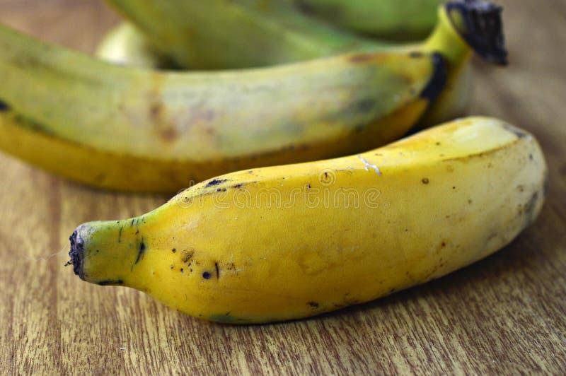 тропический съестной бразильский взгляд макроса бананов стоковые изображения rf