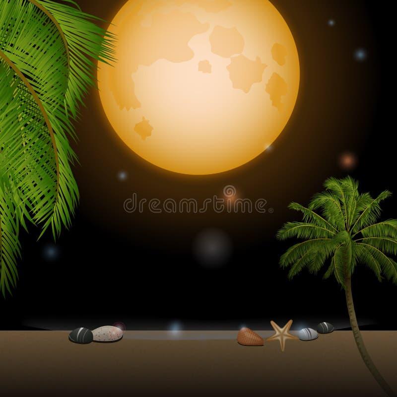 Тропический лунный свет над песчаным пляжем иллюстрация вектора