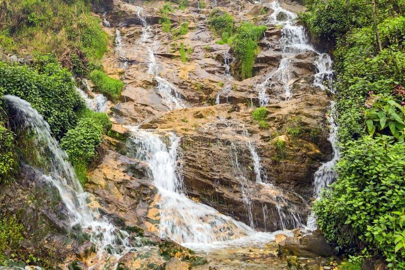 Тропический Tien Sa водопада падает в Sapa Вьетнам стоковое фото rf