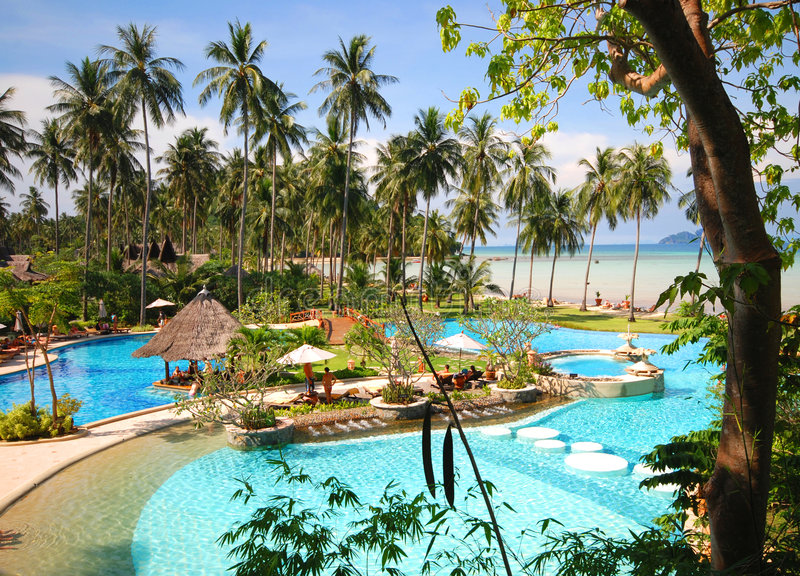 тропическое бассеина тайское стоковое изображение rf
