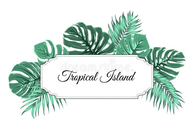 Тропическое дерево джунглей острова выходит рамка границы бесплатная иллюстрация