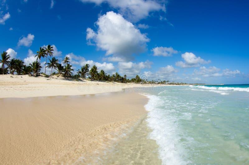 Download Тропическое море стоковое фото. изображение насчитывающей экземпляр - 33730178