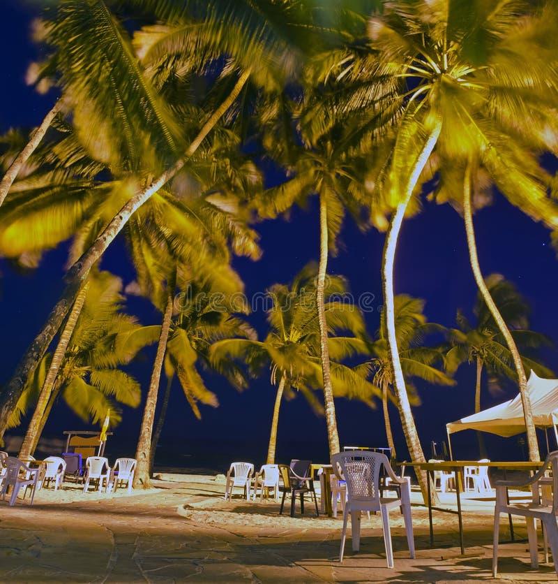 Тропическое патио пляжа стоковое изображение rf