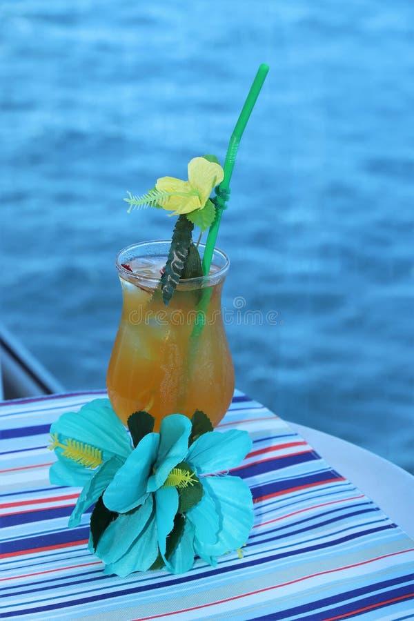 Тропическое питье с плодоовощ и голубой предпосылкой океана стоковые изображения