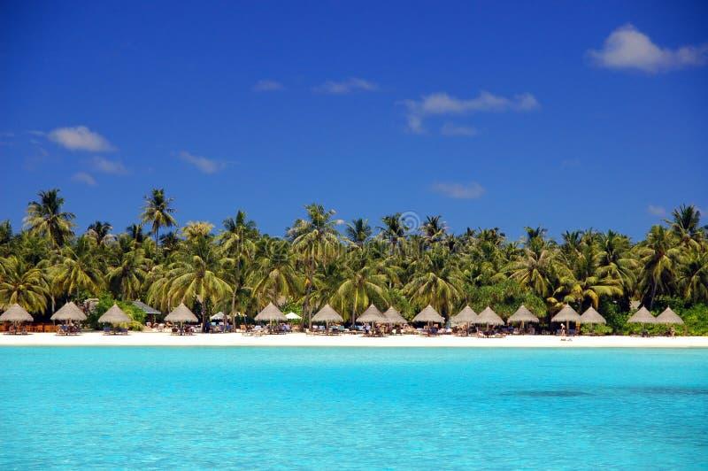 тропическое пляжа красивейшее стоковые изображения rf