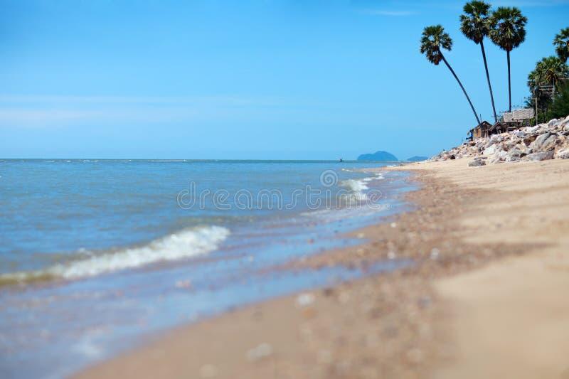 тропическое пляжа мечт стоковые изображения rf
