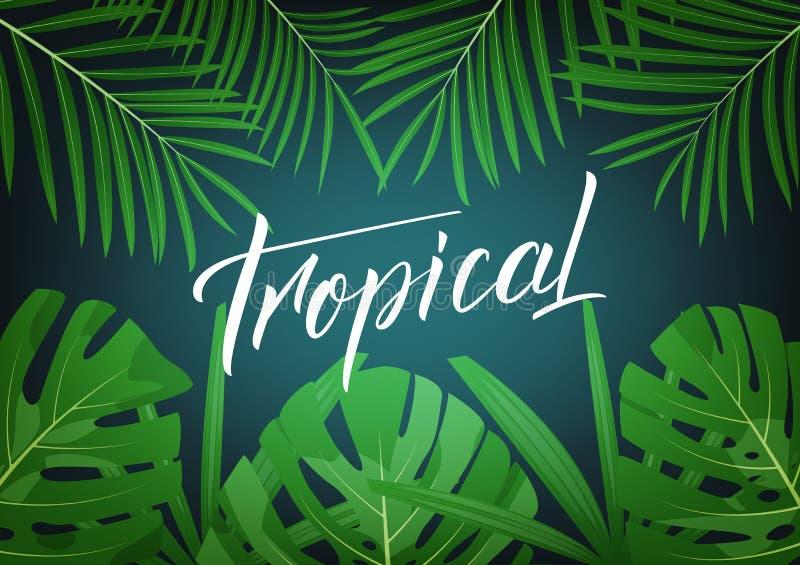 тропическо План современного дизайна с джунглями литерности и тропика выходит Предпосылка лета тропическая экзотическая бесплатная иллюстрация