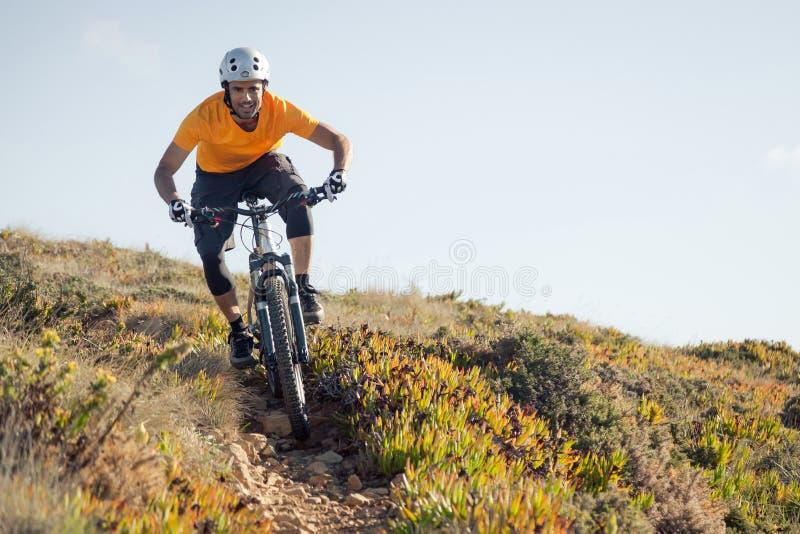 Тропка катания велосипедиста горы стоковые изображения