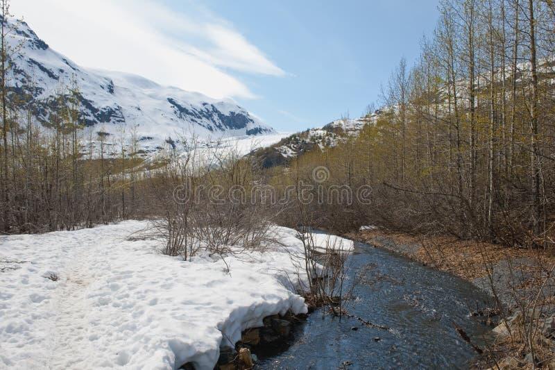 тропка потока горы стоковые фотографии rf