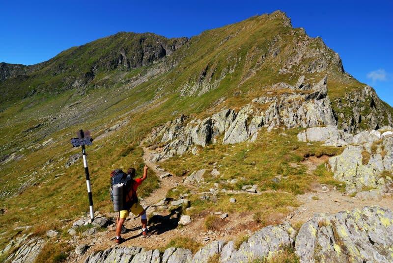 тропка прикарпатской горы туристская стоковое фото rf