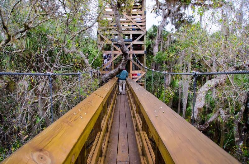 Тропка сени, Флорида стоковое изображение
