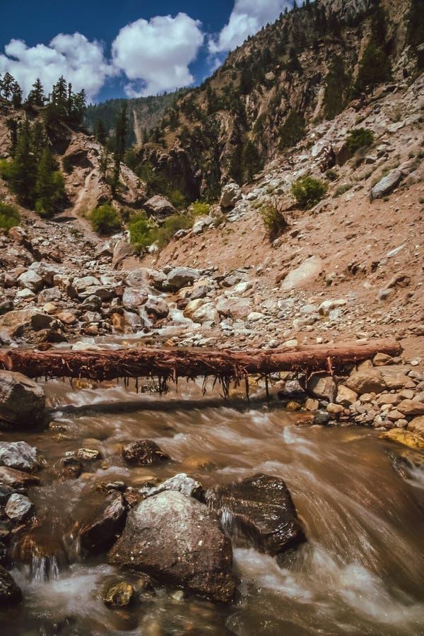 тропка США весен горы manitou падения colorado стоковое изображение