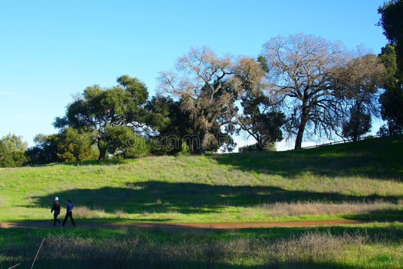 тропка california hiking стоковые изображения