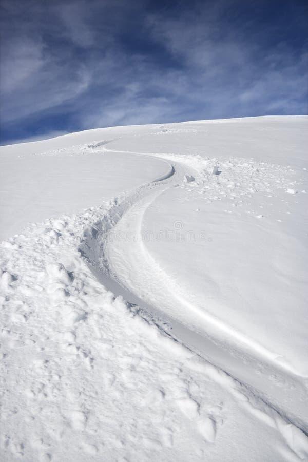 тропка snowmobile стоковое изображение