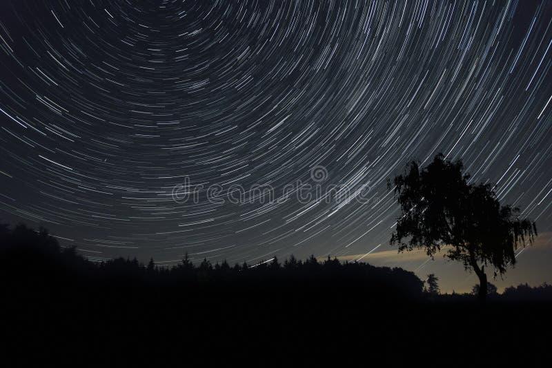 тропки звезды стоковые фото