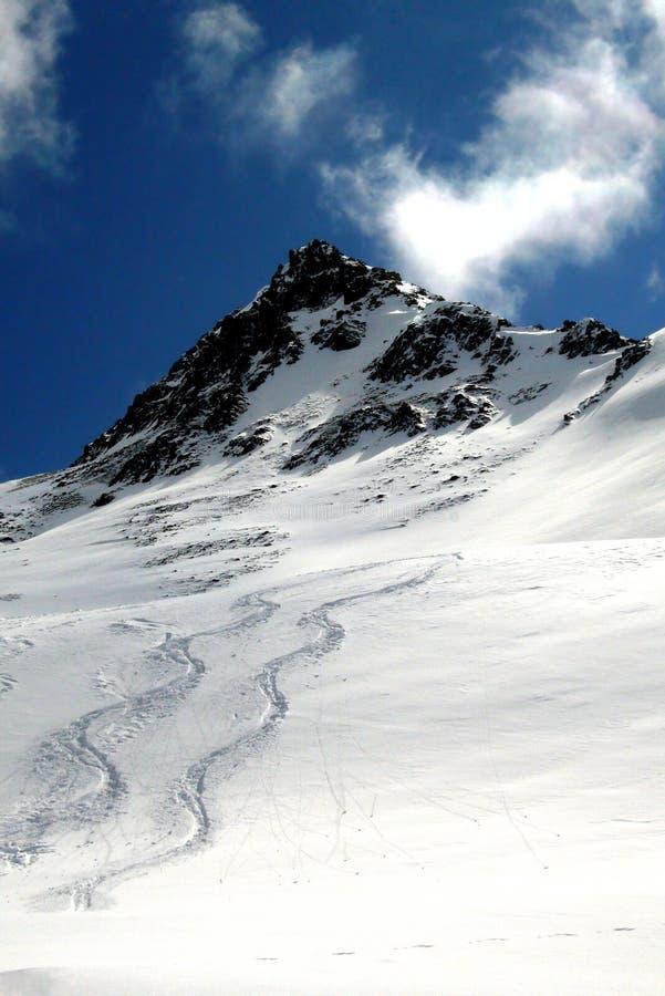 тропки лыжи стоковое фото