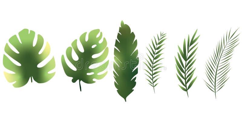 Троповые текстуры набора зеленого цвета цвета мультфильма лист иллюстрация вектора