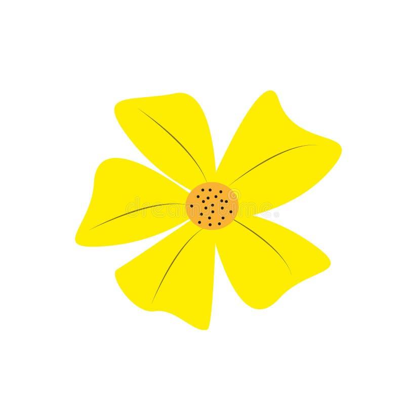 Троповый вектор цветков Гавайский гибискус и экзотическими aloha изолированная заводами иллюстрация Цветок californica Eschscholz иллюстрация вектора