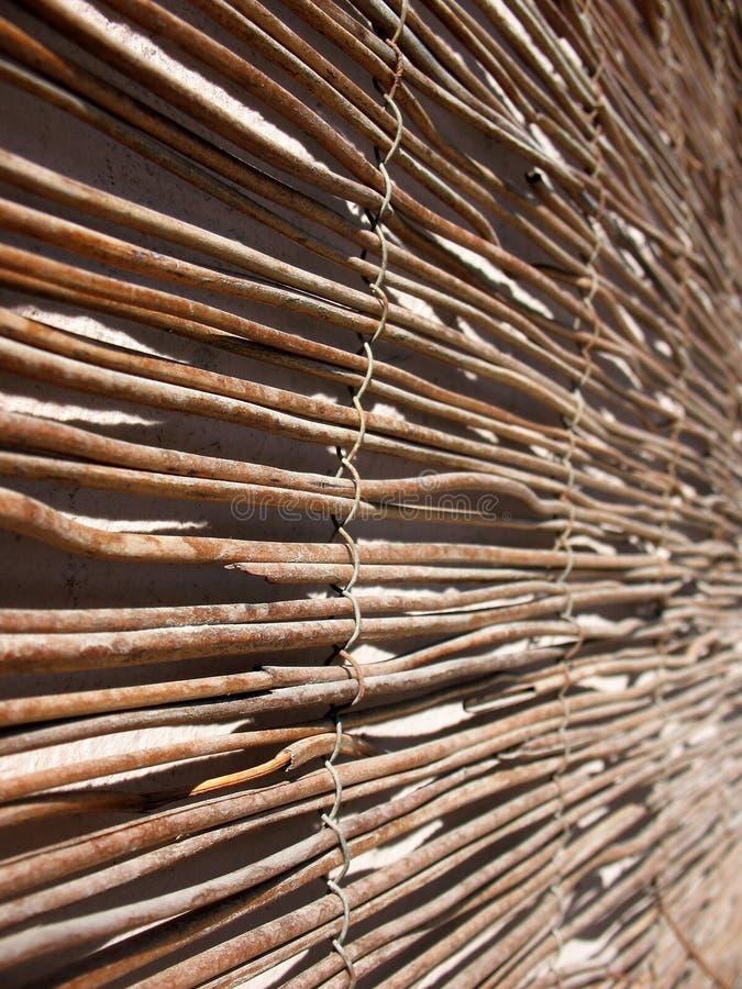 тростники циновки стоковая фотография rf