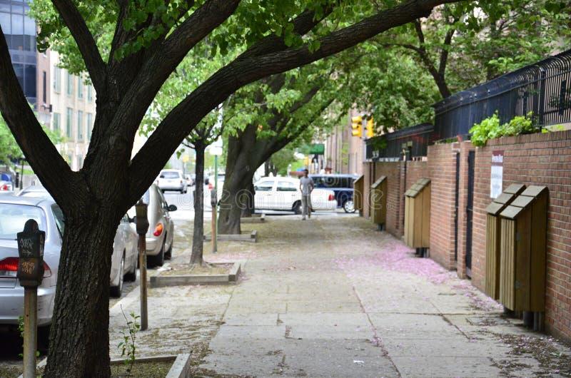 Тротуар улицы свода стоковые изображения rf