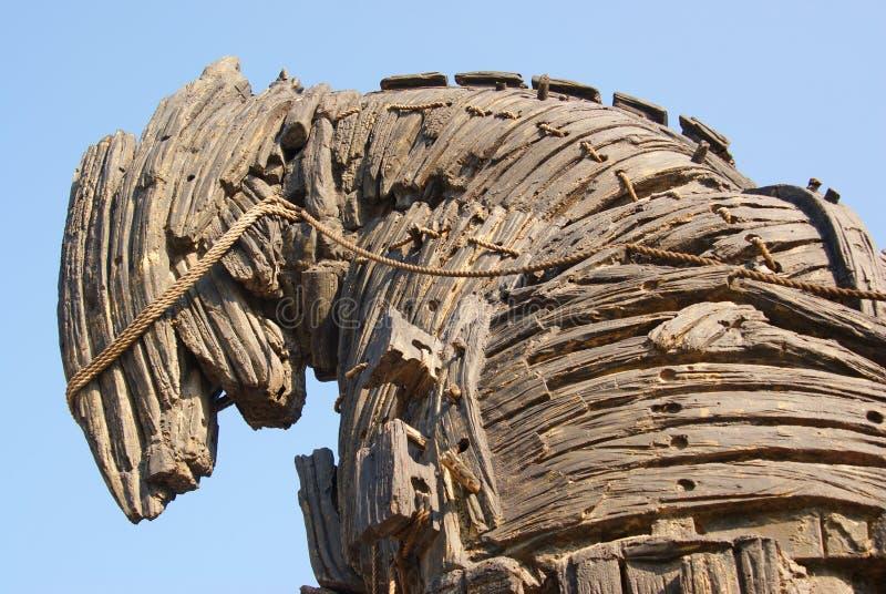 троянец лошади детали стоковая фотография rf