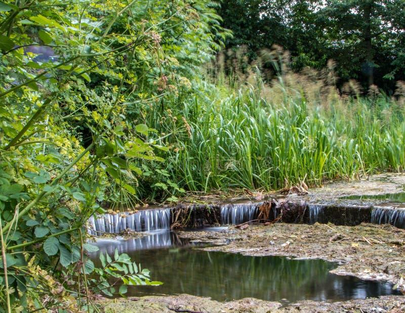Труба переполнения озера стоковое изображение