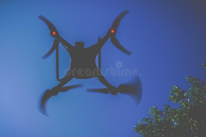 Трутень в лесе вверх в воздухе стоковое фото