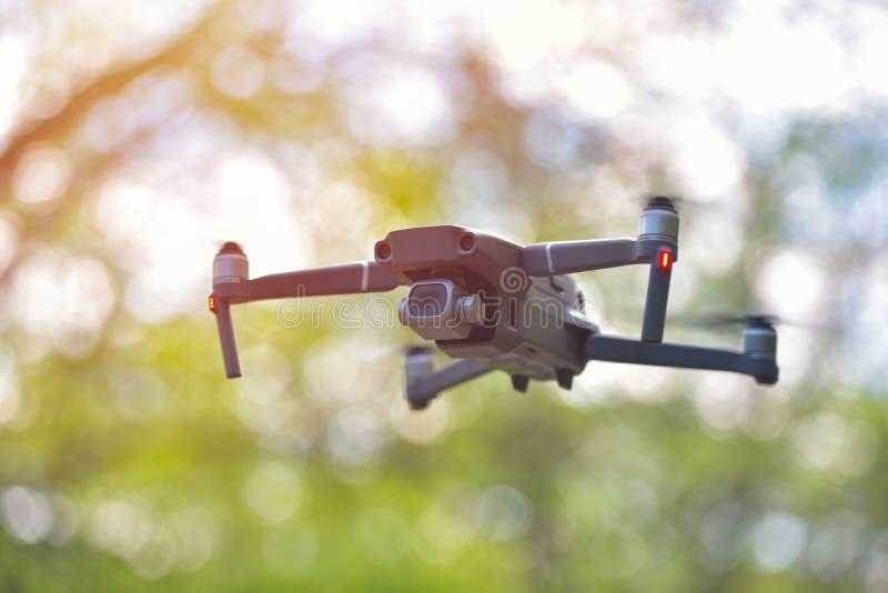 Трутень летая с камерой завиша внутри forrest, естественной предпосылки стоковое изображение