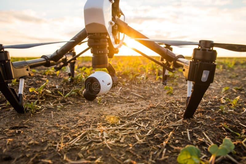 трутень с летанием цифровой фотокамера в небе над полем на заходе солнца стоковая фотография