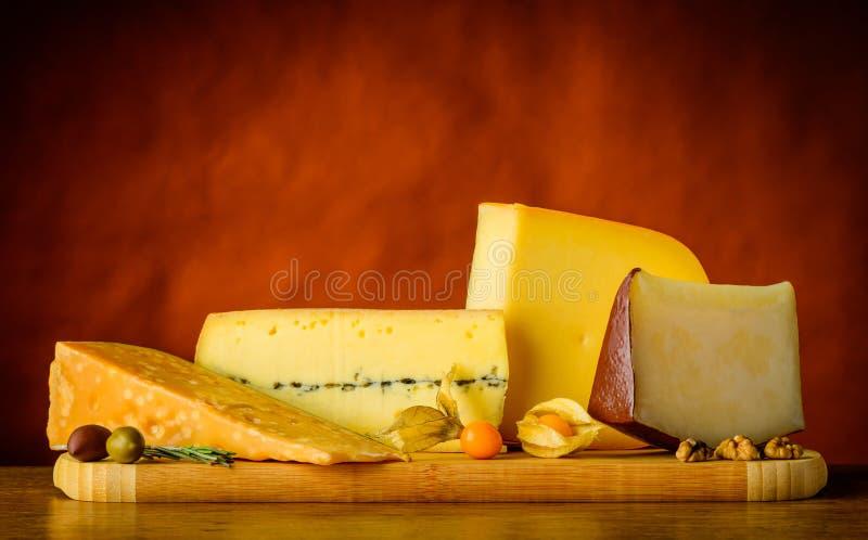 Трудный сыр и гауда стоковые фото