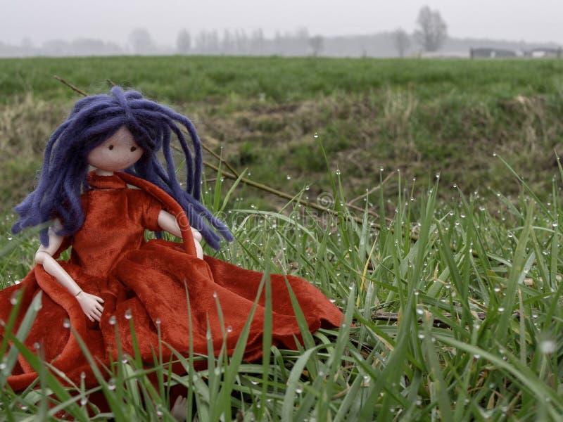 Тряпичная кукла с голубыми волосами и красным платьем в траве с падениями росы стоковое изображение